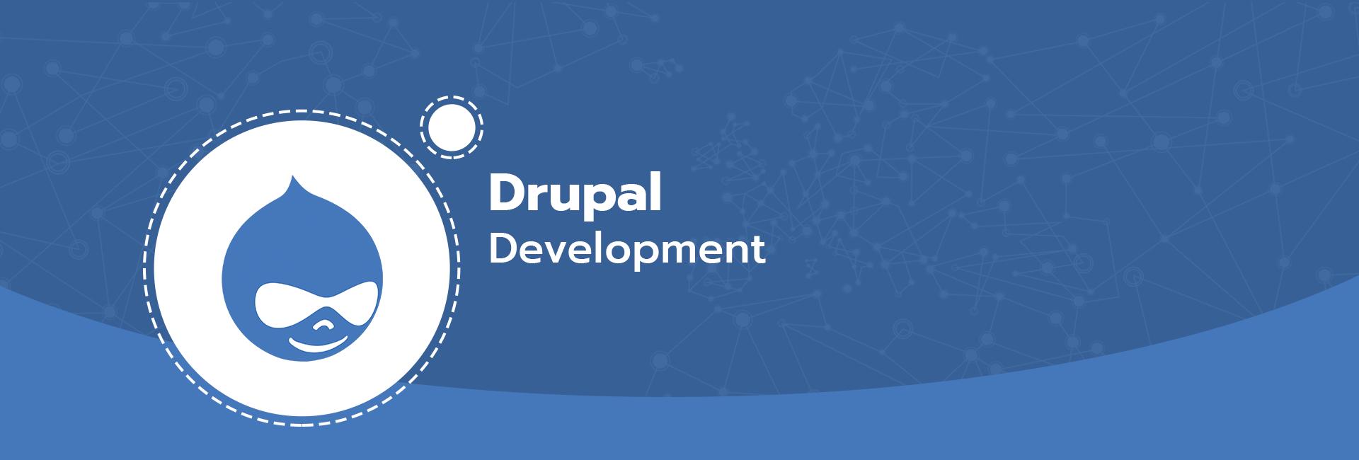 Hire Drupal Developer